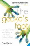 GeckosFoot.jpg